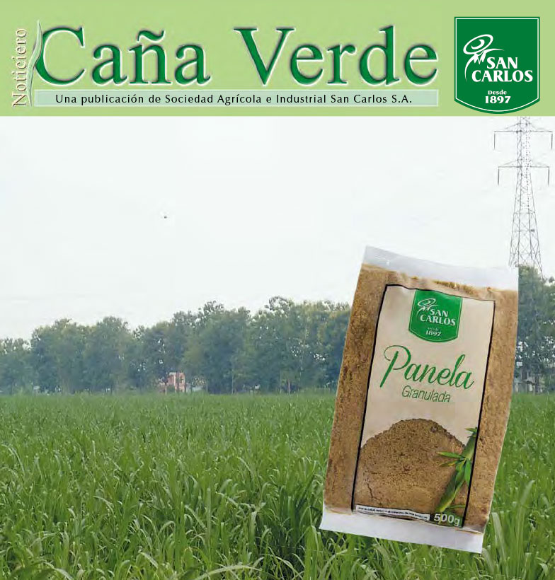 Revista Caña Verde Nov 2014