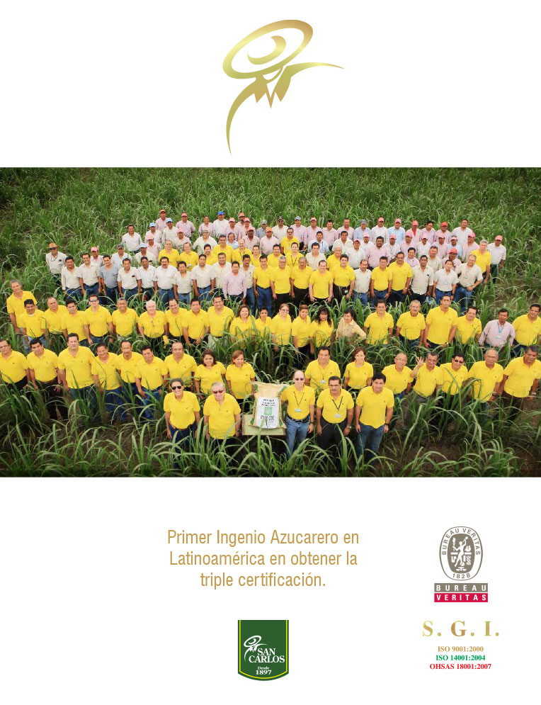 Sustainability Memoir 2012